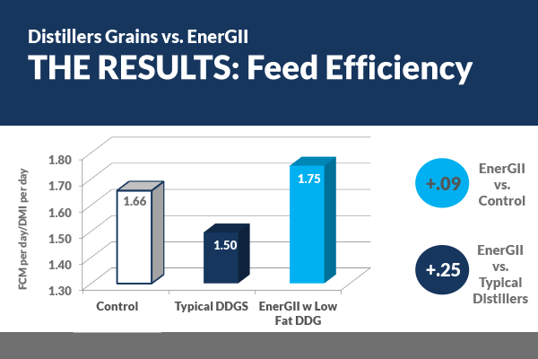 EnerGII vs. DDG