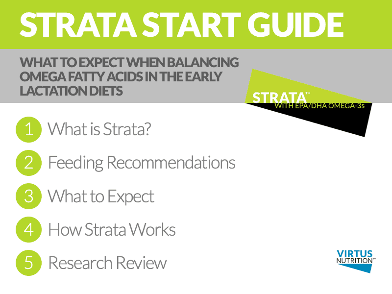 Strata with EPA/DHA omega-3's is the best way to significantly improve your omega balance for up to 10.8 pounds more milk, plus reproductive gains. Check out this simple start guide to see how to get a started toward a whole new healthy with Strata.