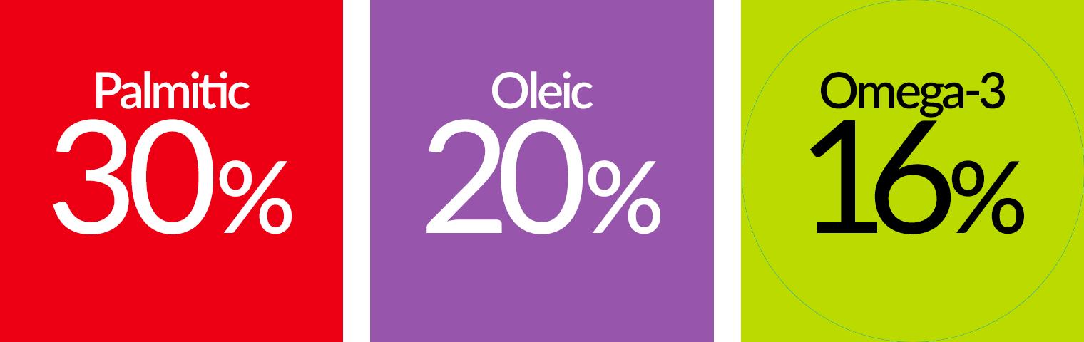 30% Palmitic, 20% Oleic, 4% Omega-6, 16% Omega-3
