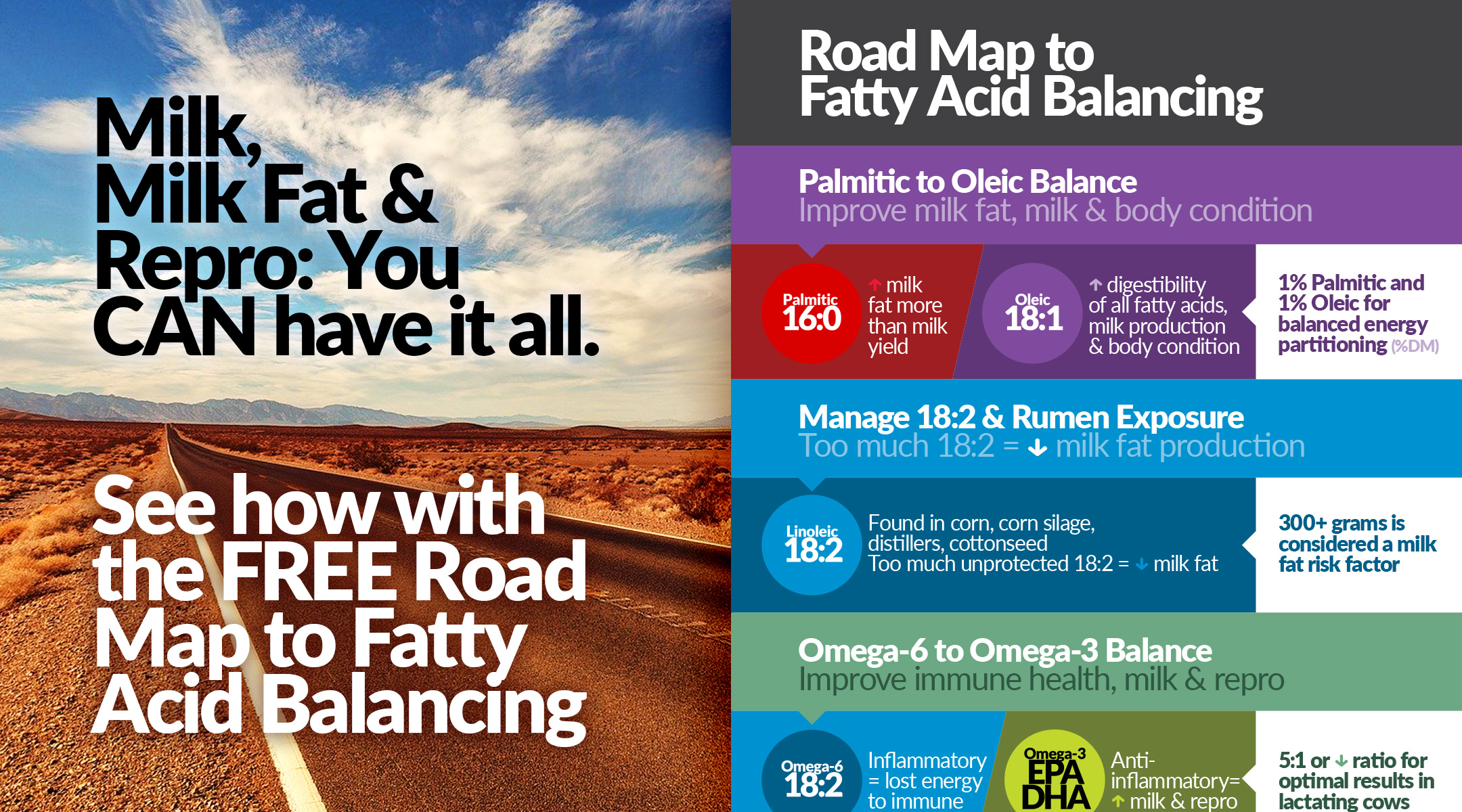 See the Road Map to Fatty Acid Balancing