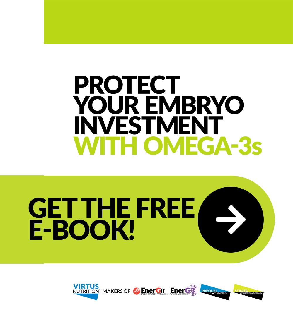 Get the FREE E-Book